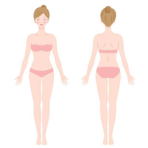 standing female body vector art illustration
