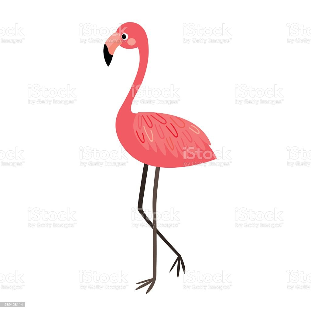Standing Flamingo animal cartoon character vector illustration.