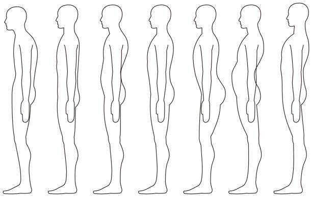 standing human, Side posture. standing human, Side posture. good posture stock illustrations