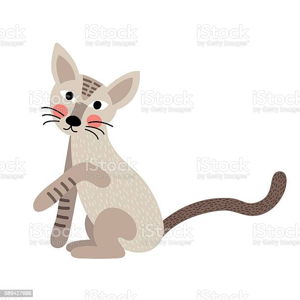 Standing javanese cat animal cartoon character vector illustration vector id589427686?b=1&k=6&m=589427686&s=612x612&h=bmpn55tjyxptt6zn8yjlionsgtcm5a rbjj6lpnqlre=