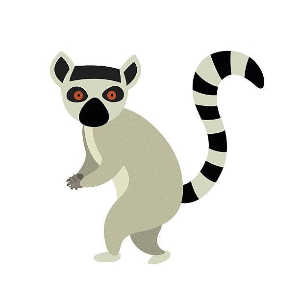 M A S K Cartoon Characters : Royalty free lemur clip art vector images illustrations