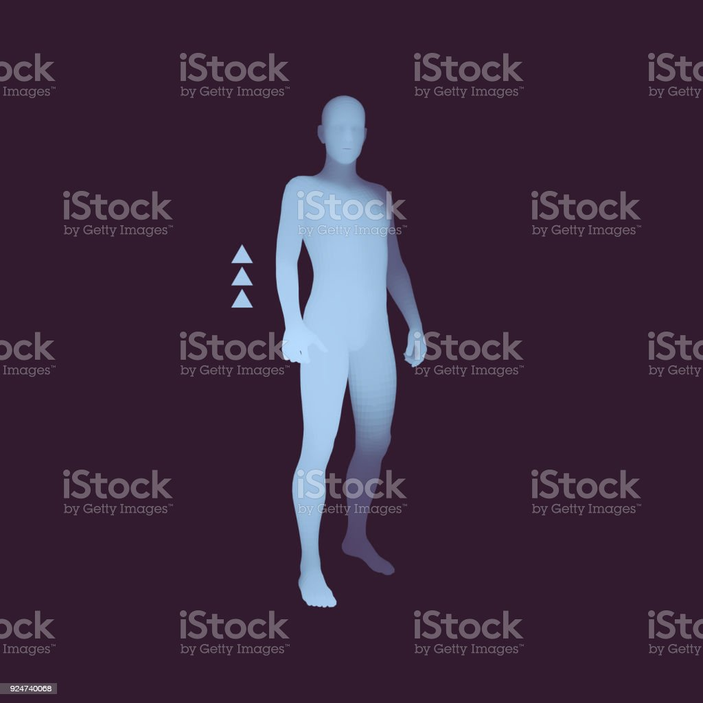 Standing Man. 3D Human Body Model. Design Element. Man Stands on his Feet. Vector Illustration. vector art illustration