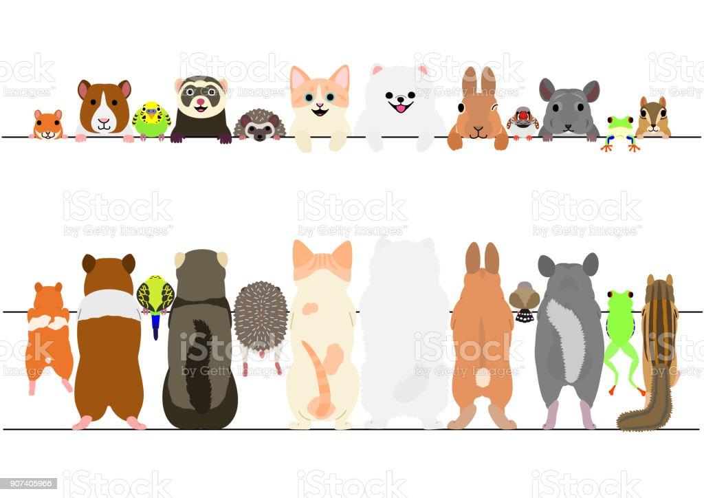 frente de animales de compañía permanente y sistema del frontera posterior - ilustración de arte vectorial