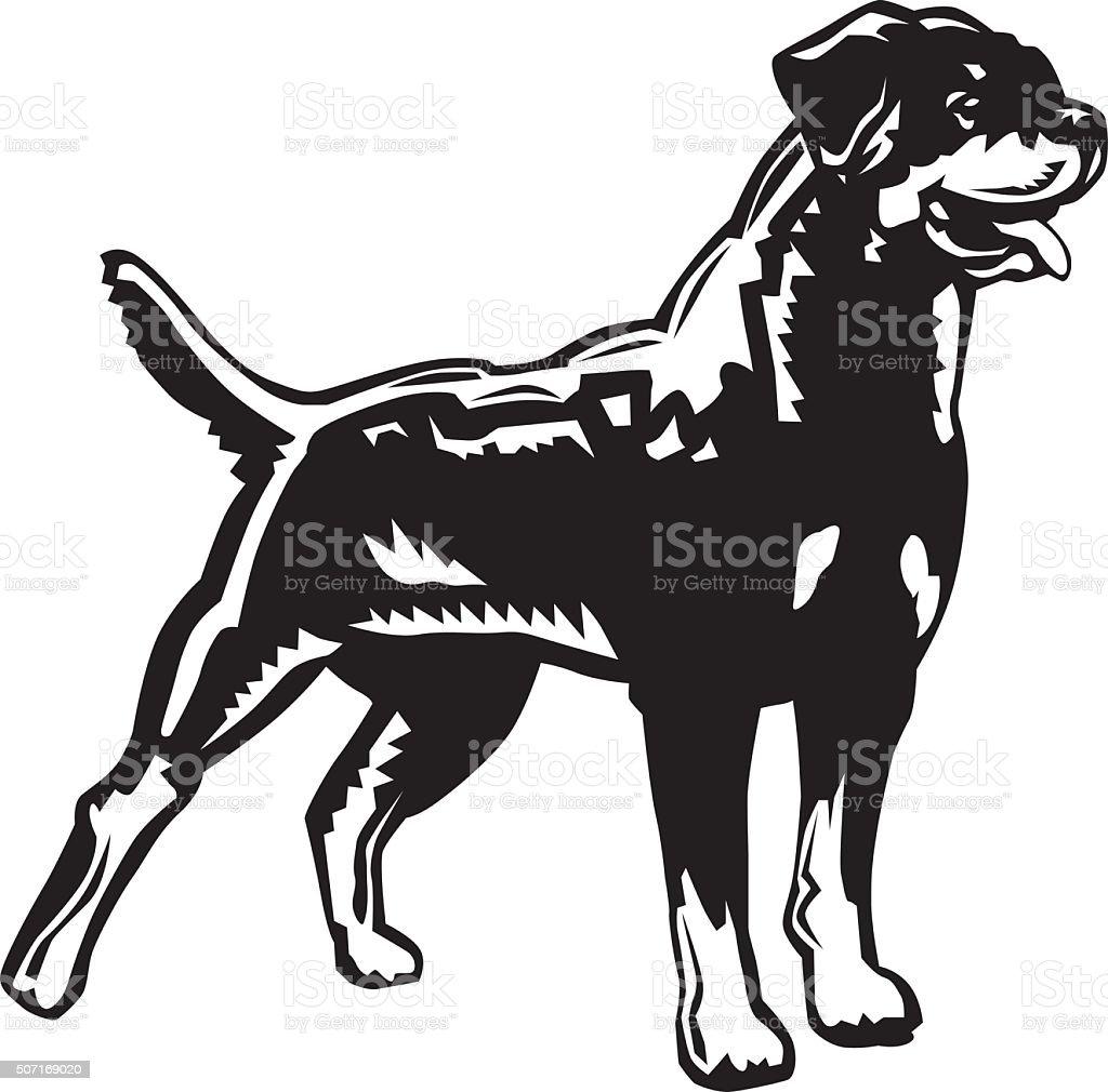 royalty free rottweiler clip art vector images illustrations istock rh istockphoto com rottweiler dog clipart rottweiler head clipart
