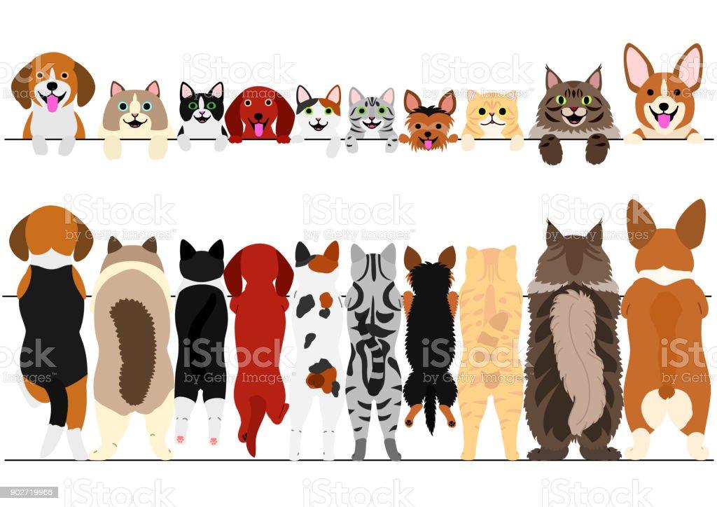 立っている小さな犬や猫の前面と背部ボーダー セット ベクターアートイラスト