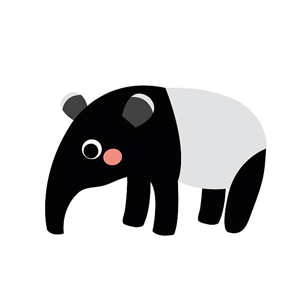 standing tapir animal cartoon character vector illustration. - square foot garden stock illustrations, clip art, cartoons, & icons