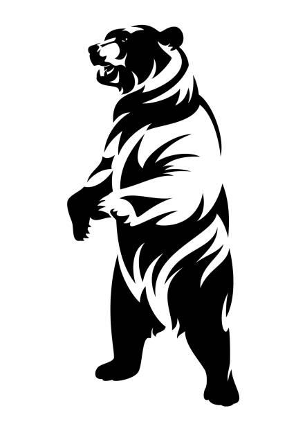 ilustrações de stock, clip art, desenhos animados e ícones de standing up grizzly bear black vector outline - urso