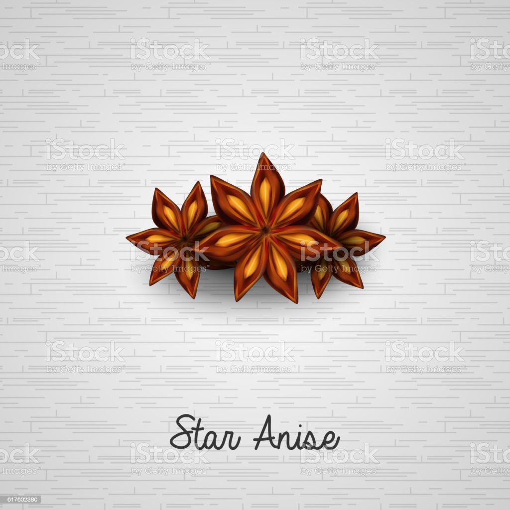 Star anise on white background vector art illustration
