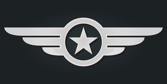 Star with wings logo. Military and Army winged badge. Silver Aviation emblem. Vector illustration.