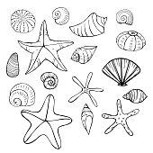 Sea Life and animals theme.