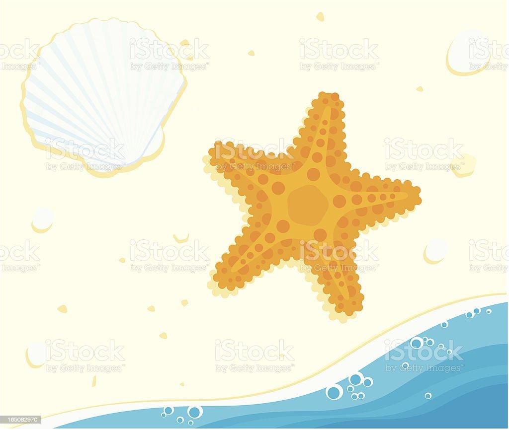 Starfish and Shell royalty-free stock vector art