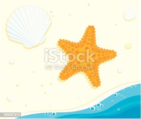 istock Starfish and Shell 165082970