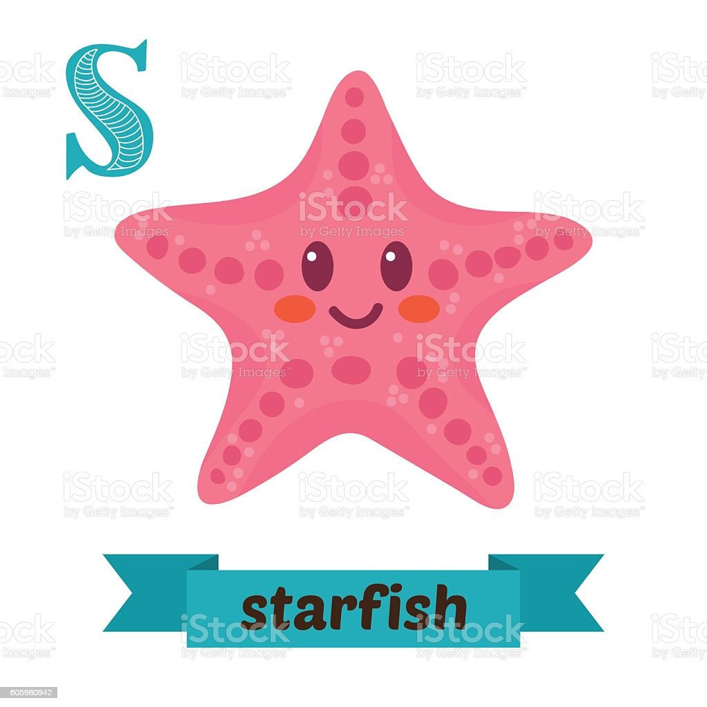 Starfish. S letter. Cute children animal alphabet in vector vector art illustration