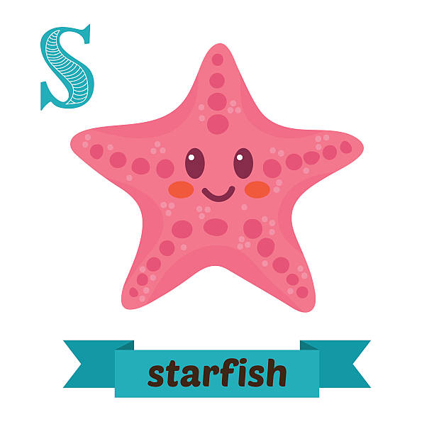 starfish. s letter. cute children animal alphabet in vector - meereslebenskindergarten stock-grafiken, -clipart, -cartoons und -symbole