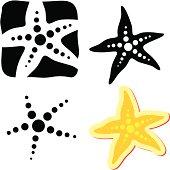 Starfish. Sea star