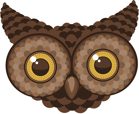 Staring Owl Head