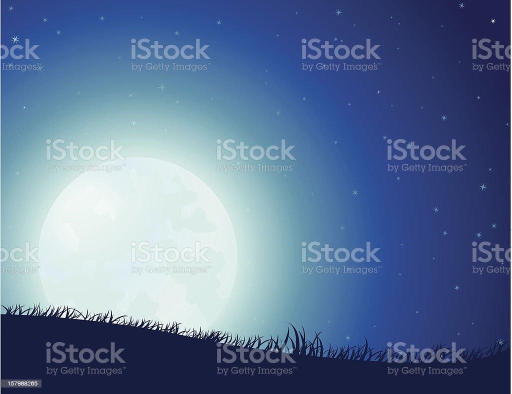 Starry Night Full Moon vector art illustration