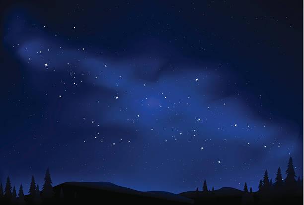 starry night vector art illustration