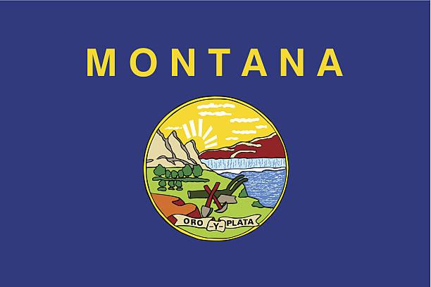 State of Montana Flag vector art illustration