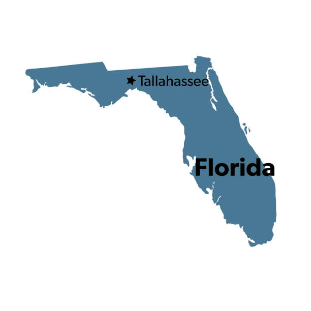 U.S State With Capital City, Florida Isolated U.S.A State With Capital City florida us state stock illustrations