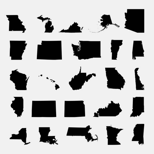 states of america territory on grey background vector art illustration