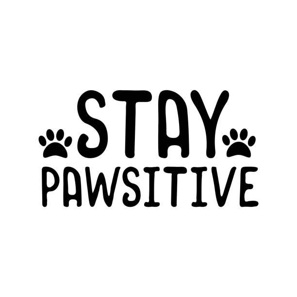 Stay pawsitive- funny text with pawprint. Stay pawsitive- funny text with pawprint. Good for t shirt print, poster, greeting card, and gift design. animal costume stock illustrations