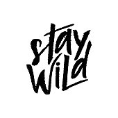 Stay wild hand lettering. Texture script. Motivational quote. Inspirational phrase. Vector illustration. Template of poster, postcard, web banner, print, background Calligraphic design