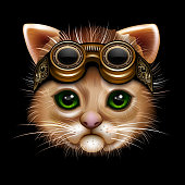 Steampunk cat face