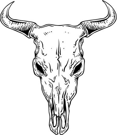 Steer Skull Outline