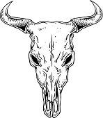 An outline illustration of a steer skull.