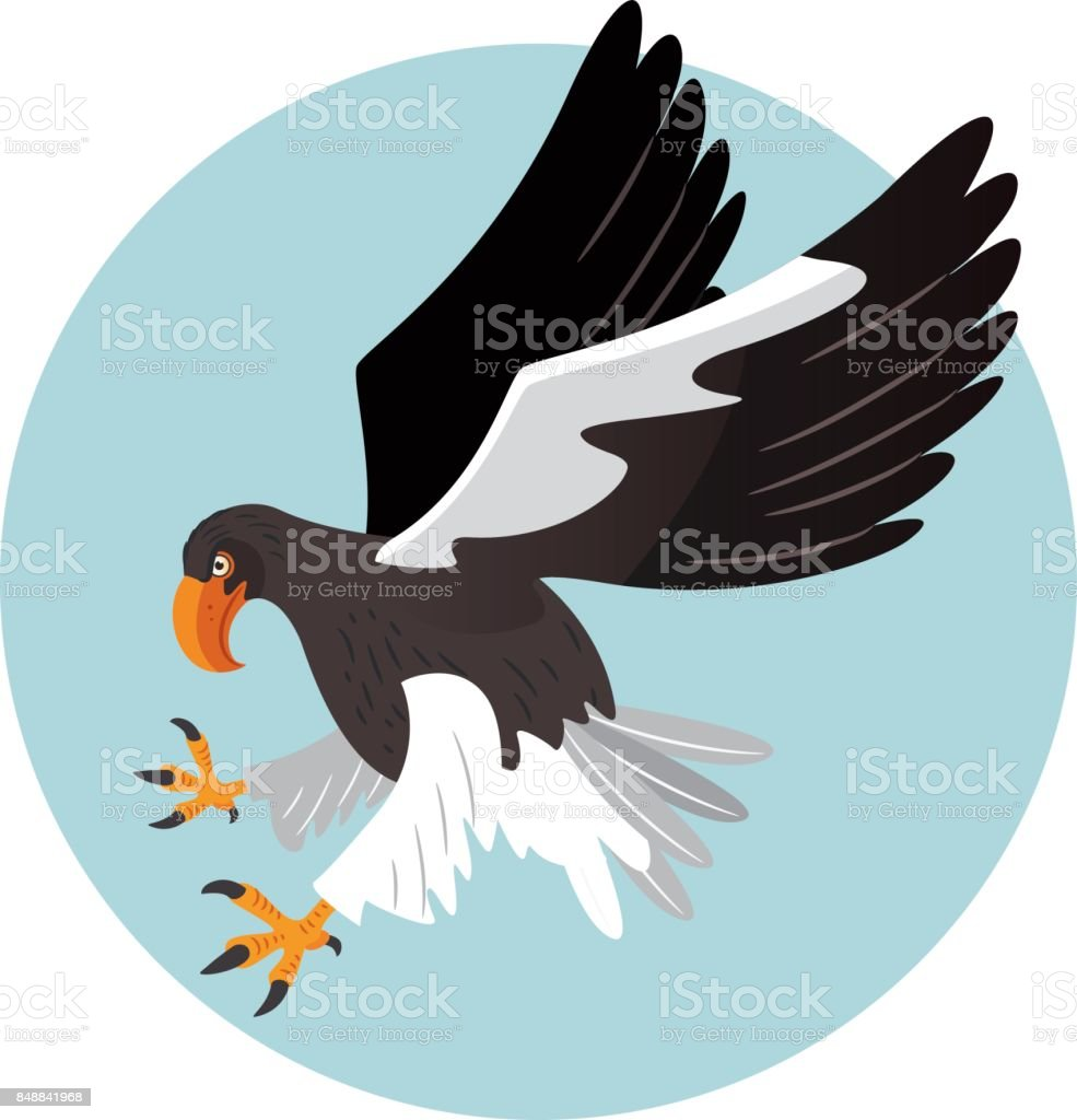 Steller's sea eagle vector art illustration