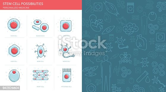 Vector icons set and pattern depicting stem cell possibilities.