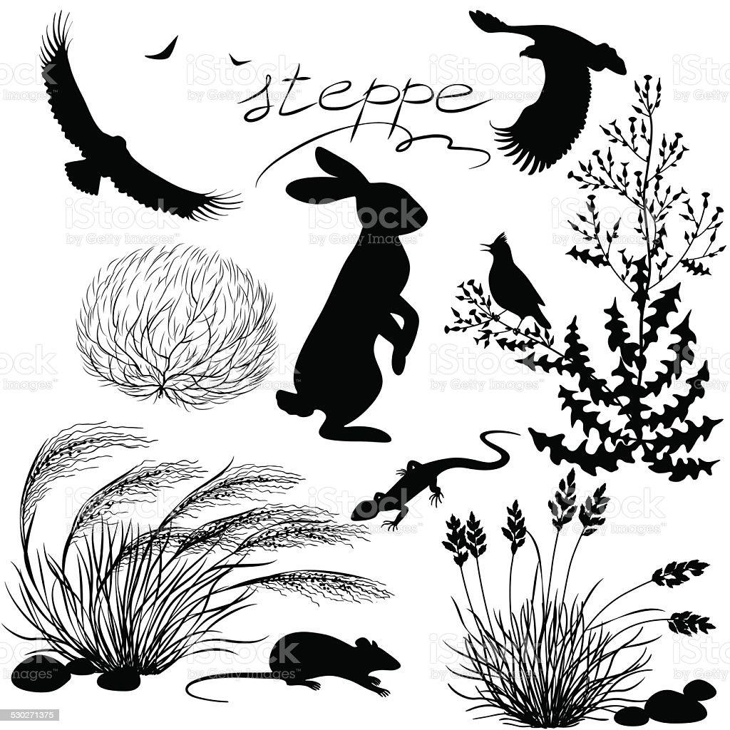 Steppe plants and animals set vector art illustration