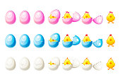 7 Steps animations different colors broken egg and chickens in vector