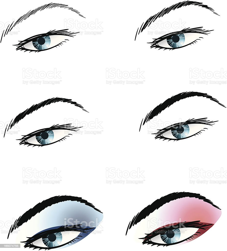 steps of eye makeup vector art illustration