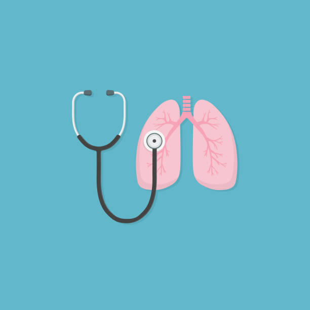 Stethoscope and lung illustration. medical tool for diagnosing of diseases of lungs. Health care and medicine concept Flat stethoscope and lung illustration human lung stock illustrations