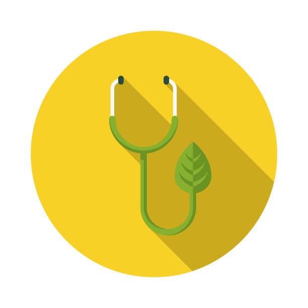 stethoscope flat design naturopathy icon with side shadow - naturopathy stock illustrations, clip art, cartoons, & icons