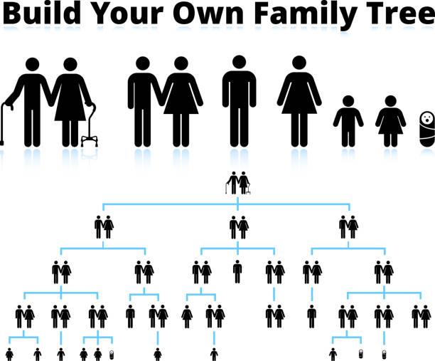 strichmännchen family tree - stammbäume stock-grafiken, -clipart, -cartoons und -symbole