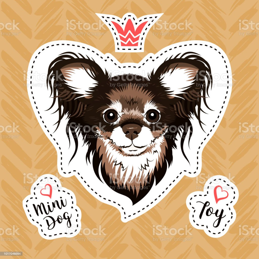 Sticker glamorous dog. Russian Toy Terrier small breed of dog. Modern illustration for stickers, embroidery, badges. Vector patch set, Sticker with dog head on golden background vector art illustration