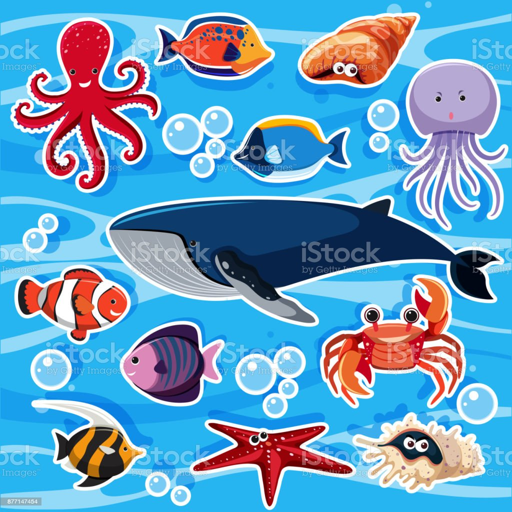 Sticker template with many sea animals vector art illustration