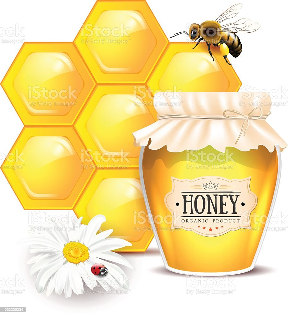 Still life with honey concept vector art illustration
