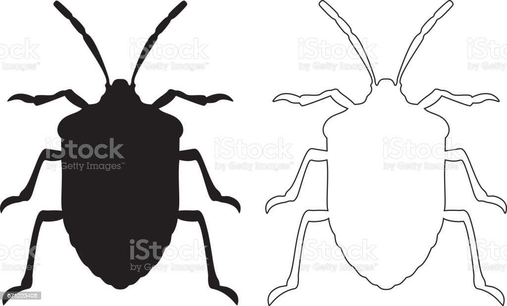 Stink Bug Stock Vector Art More Images Of Animal 671223406 Istock