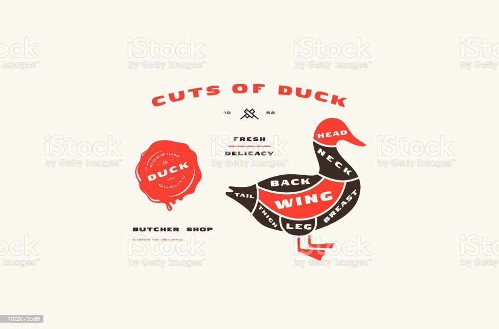 stock vector duck cuts diagram in flat style vector id1022072558 stock vector duck cuts diagram in flat style stock vector art & more