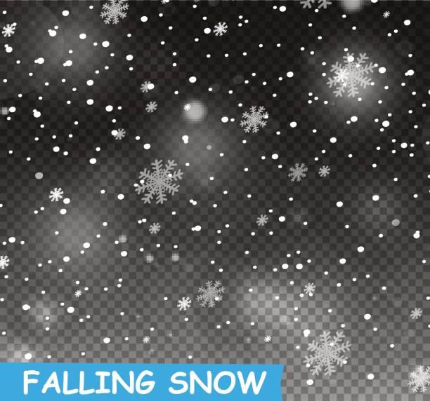 illustrazioni stock, clip art, cartoni animati e icone di tendenza di stock vector illustration falling snow. snowflakes, snowfall. transparent background. fall of snow - corn flakes