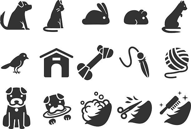 stock-illustration: haustier icons set 1 - hamsterhaus stock-grafiken, -clipart, -cartoons und -symbole