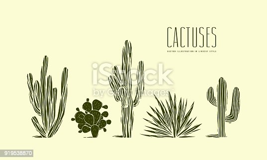 Stock vector set of hand drawn cactus. Illustration in linocut style. Different forms of plants. Green print on light background