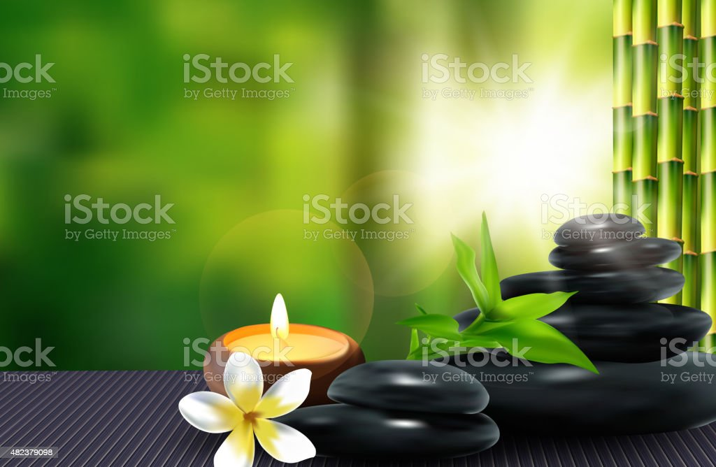 Stone, flower and bamboo background. vector vector art illustration