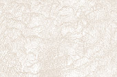 Stone texture background from riverbed