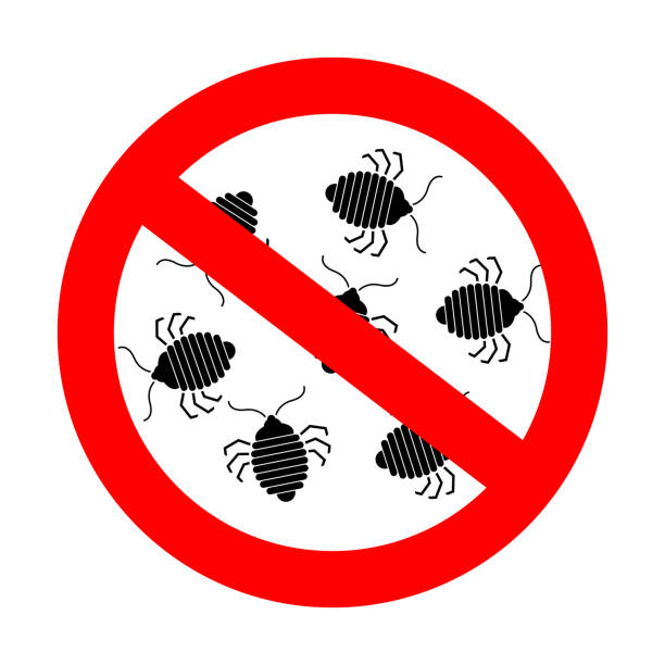 Stop bedbug. Red prohibition road sign. Ban Bed bug Stop bedbug. Red prohibition road sign. Ban Bed bug parasitic stock illustrations