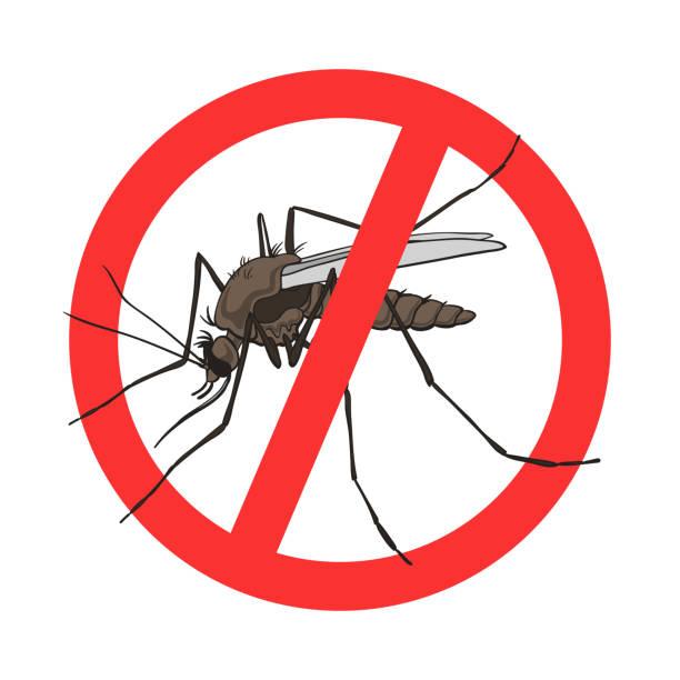 illustrazioni stock, clip art, cartoni animati e icone di tendenza di stop mosquito sign, vector image in a red crossed out circle. mosquito warning, prohibited sign, no mosquito - zanzare